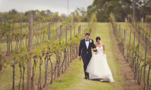 Bride and groom walk through the vineyard at Sirromet Wines after their ceremony